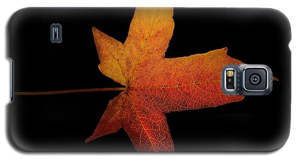 Fallen Leaf Galaxy S5 Case