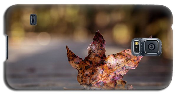Galaxy S5 Case featuring the photograph Fallen Leaf by Serge Skiba