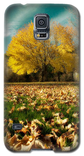 Fallen Leaves Galaxy S5 Case by Cindy Haggerty