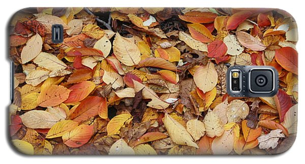 Galaxy S5 Case featuring the photograph Fallen Leaves by Dora Sofia Caputo Photographic Art and Design