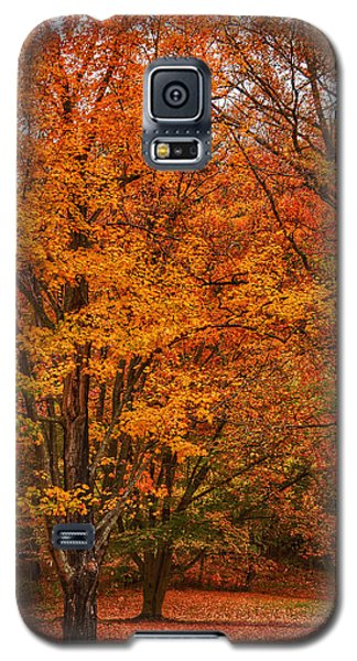 Fallen Leaves II Galaxy S5 Case