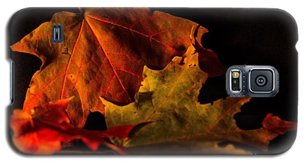 Galaxy S5 Case featuring the photograph Fallen Leaves by Judy Wolinsky