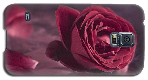 Galaxy S5 Case featuring the photograph Fallen Petals by Trevor Chriss