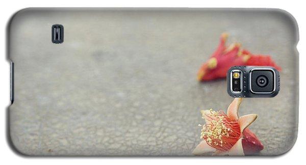 Fallen Pomegranate Blossoms Galaxy S5 Case