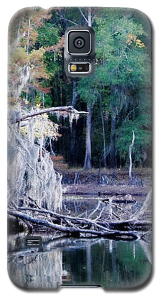Fallen Reflection Galaxy S5 Case by Lana Trussell