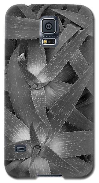 Fallen Stars Galaxy S5 Case by Tim Good