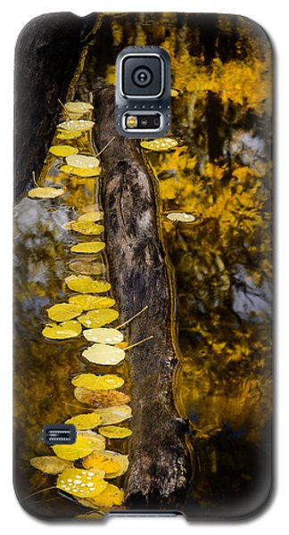Fallen Galaxy S5 Case by The Forests Edge Photography - Diane Sandoval