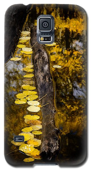 Galaxy S5 Case featuring the photograph Fallen by The Forests Edge Photography - Diane Sandoval