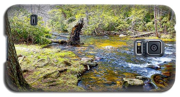 Fallen Tree In Stream Pocono Mountains Galaxy S5 Case by A Gurmankin