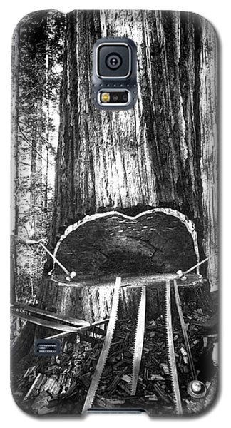 Falling A Giant Sequoia C. 1890 Galaxy S5 Case by Daniel Hagerman