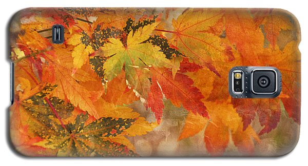 Falling Colors I Galaxy S5 Case