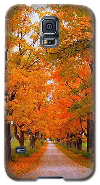 Falling For Romance Galaxy S5 Case by Lingfai Leung