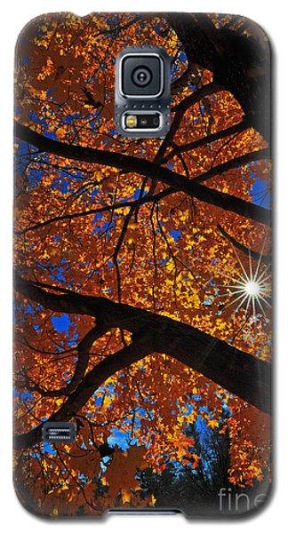 Falling Star Galaxy S5 Case