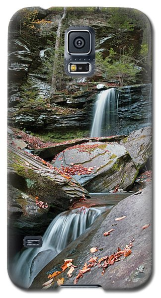 Falling Water Meets Fallen Leaves Galaxy S5 Case
