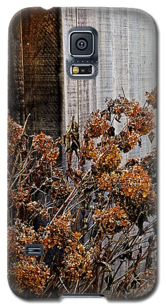 Fall's Fleeting Memories Galaxy S5 Case