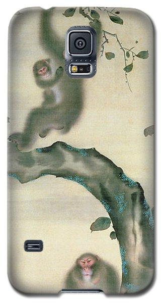 Family Of Monkeys In A Tree Galaxy S5 Case by Japanese School