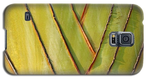 Fan Like Leaves Of The Traveler Palm Galaxy S5 Case by Yali Shi