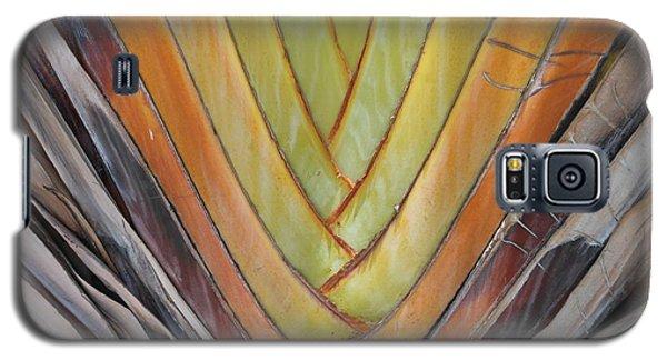 Fan Palm Trunk Galaxy S5 Case
