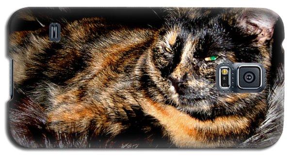 Fancy Cat Galaxy S5 Case