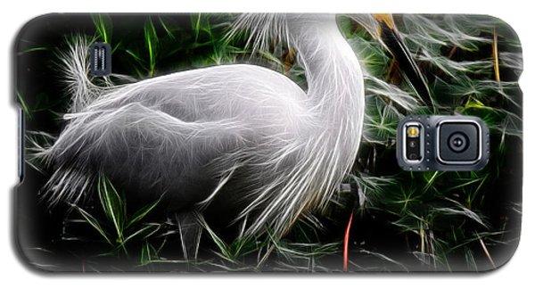 Fancy Feathers Galaxy S5 Case
