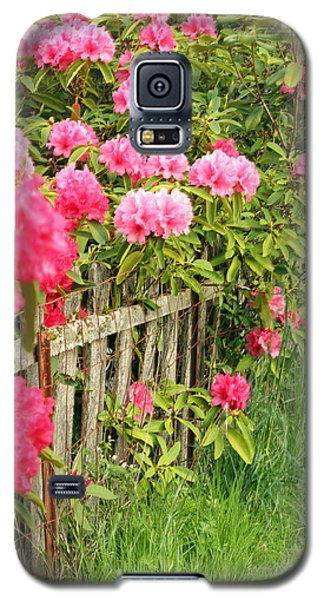 Fancy Fence Galaxy S5 Case