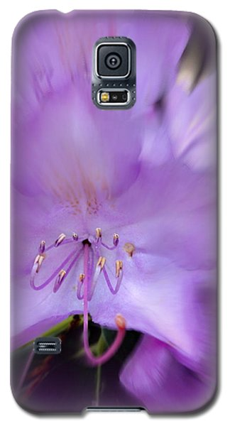 Galaxy S5 Case featuring the photograph Fancy Flora 11 by Mary Beth Landis