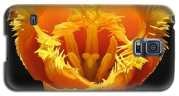 Fancy Frills Tulip Galaxy S5 Case