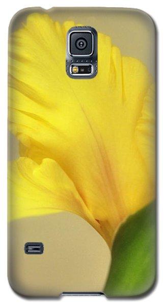 Fanning Glady Galaxy S5 Case by Deborah  Crew-Johnson