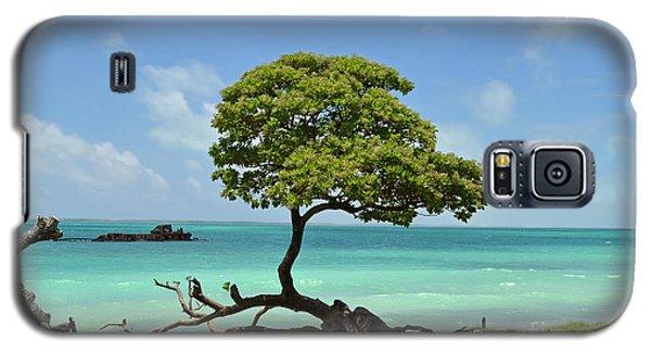 Fanning Tree On Beach Galaxy S5 Case