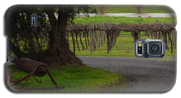Farm And Vineyard Galaxy S5 Case
