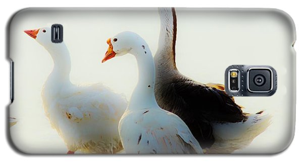 Farm Geese Galaxy S5 Case by Lynda Dawson-Youngclaus