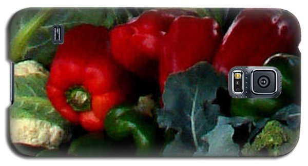 Farmer's Market 1 Galaxy S5 Case by Dana Patterson