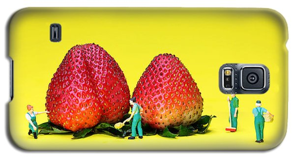 Farmers Working Around Strawberries Galaxy S5 Case