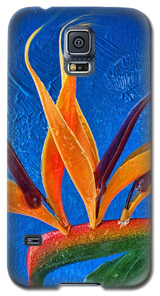 Fata Morgana 1 Galaxy S5 Case