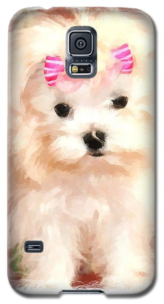 Galaxy S5 Case featuring the photograph Faux Maltese Bella by Margaret Newcomb