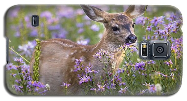 Fawn In Asters Galaxy S5 Case