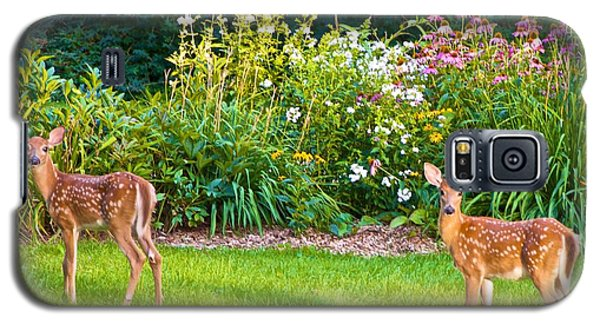Fawns In The Afternoon Sun Galaxy S5 Case