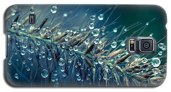 Feather Grass Dance  Galaxy S5 Case by Jean OKeeffe Macro Abundance Art