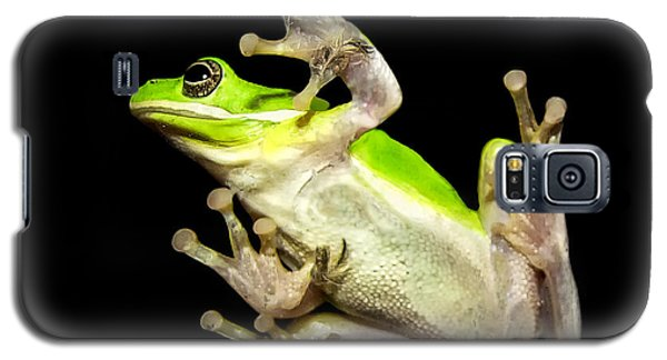 Feathered Frog Galaxy S5 Case