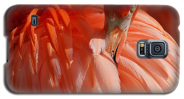Feathered Galaxy S5 Case by Lorenzo Cassina