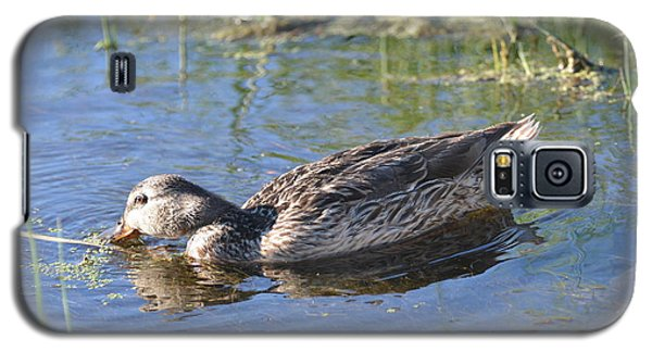 Galaxy S5 Case featuring the photograph Feathers And Light by Laurianna Taylor