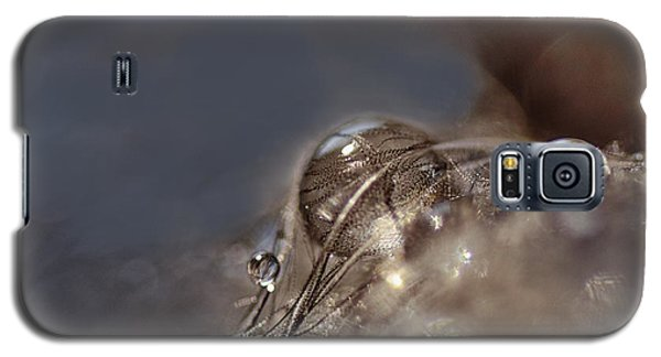 Feathers And Pearls Galaxy S5 Case by Susan Capuano