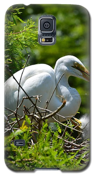 Galaxy S5 Case featuring the photograph Feed Me Mom by Judith Morris
