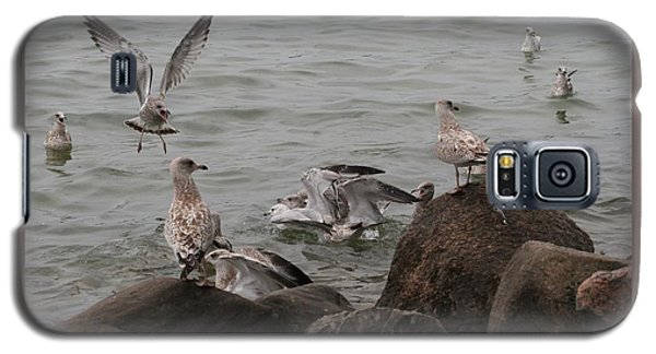 Galaxy S5 Case featuring the photograph Feeding Frenzy by Patricia Overmoyer