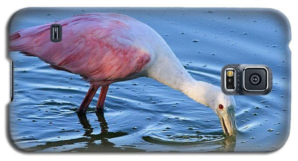 Feeding Spoonbill Galaxy S5 Case