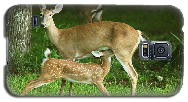 Galaxy S5 Case featuring the photograph Feeding Time by Myrna Bradshaw