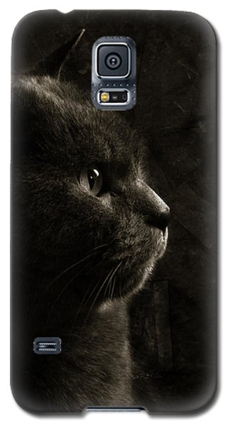 Feline Perfection Galaxy S5 Case by Laura Melis