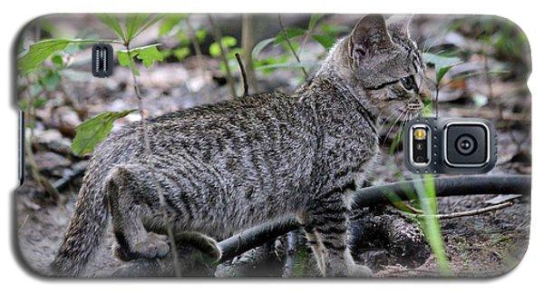 Felix The Cat Galaxy S5 Case
