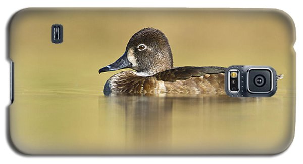 Galaxy S5 Case featuring the photograph Female Ring Necked Duck by Bryan Keil