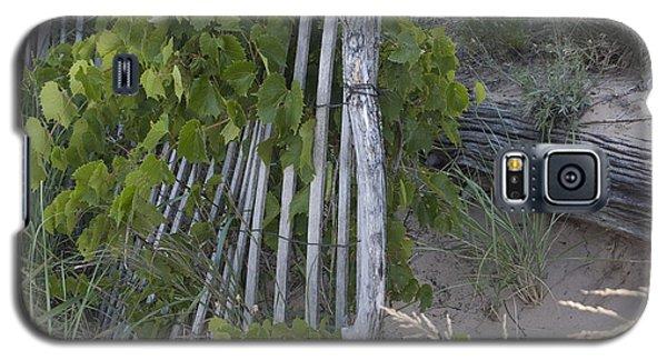 Fence N Sand Galaxy S5 Case by Tara Lynn